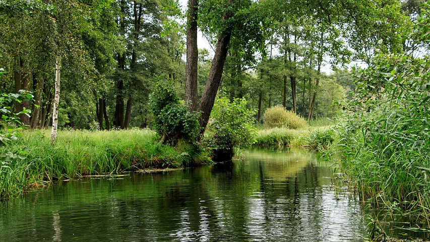 Natural places in Germany: Spreewald