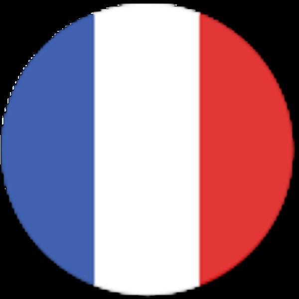 Vocabulary - Yabla French - Free French Lessons